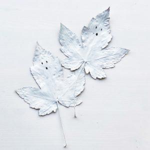 Spøkelsesblader