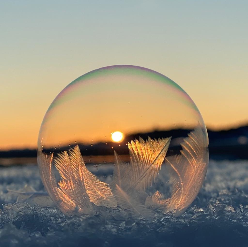Såpebobler minusgrader isroser